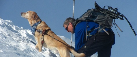Picture showing Randy and Quinn climbing Mt. Monroe in the winter, Quinn holding his head majestically up in the air.